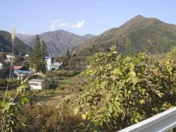 Japan - Naturaufnahme - Minakami